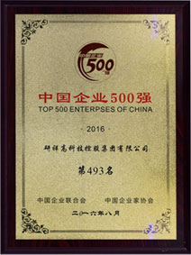 China Top 500 Enterprise